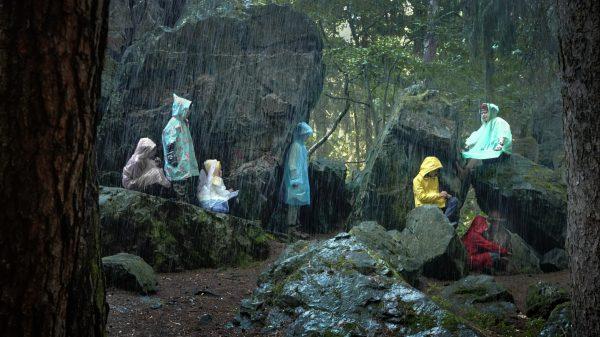 Foto Martin und das Geheimnis des Waldes